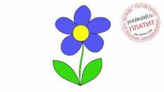 Как нарисовать красивый голубой цветок(Как нарисовать картинку поэтапно карандашом за короткий промежуток времени. Видео рассказывает о том,..., 2014-07-07T10:16:16.000Z)