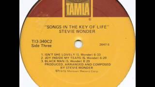 Stevie Wonder - Isn