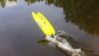 Proboat Miss Geico 24 Brushless Upgrade,1st Runs & Flip