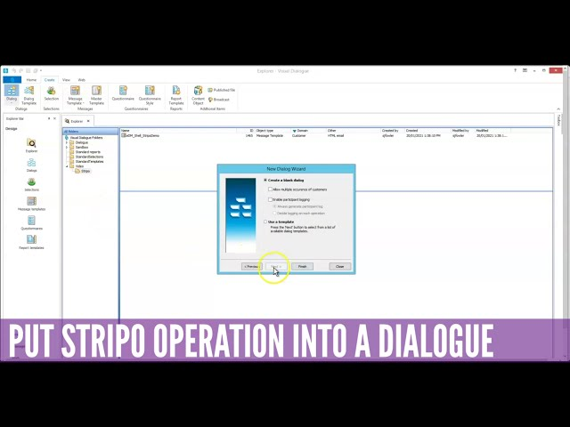 HOW TO Use the Stripo Plugin