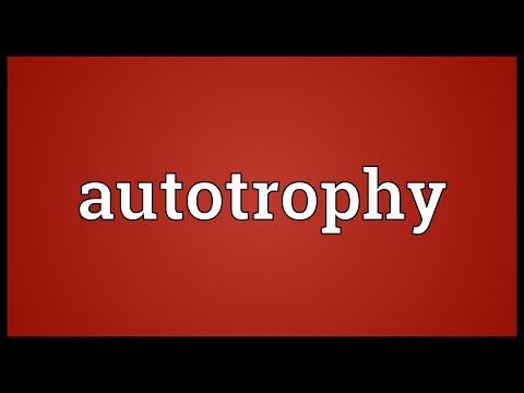 Header of autotrophy