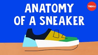 The wildly complex anatomy of a sneaker - Angel Chang