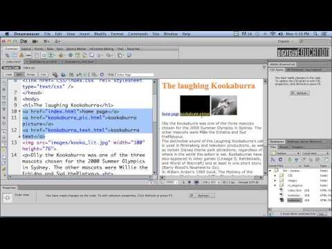 HTML Basics Links 1 Relative