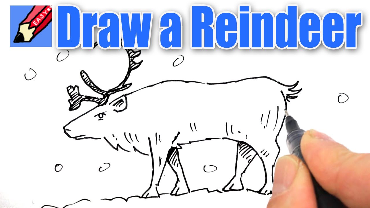 How to draw a Reindeer Real Easy - YouTube