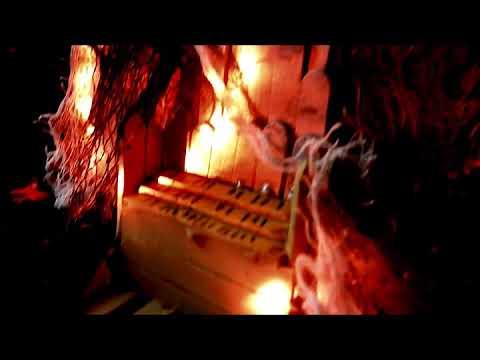 Dog Carcass - Organ Failure [Official Music Video]