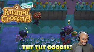 Tut Tut Goose! (King Tut Game) | Animal Crossing New Horizons