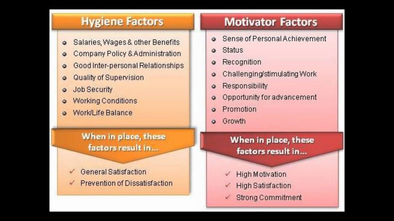 hertzbergs two factor theory of motivation essay