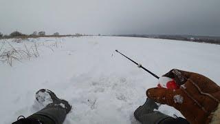 Одна лунка сделала всю рыбалку Зимняя рыбалка на безмотылку