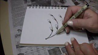 Pussy Willow Branch - How to make a Zentangle Inspired Drawing