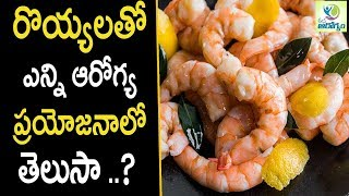 Prawns Health Benefits - Health Tips in Telugu || mana Arogyam