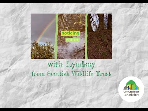 Noticing Nature with Scottish Badgers and the Scottish Wildlife Trust