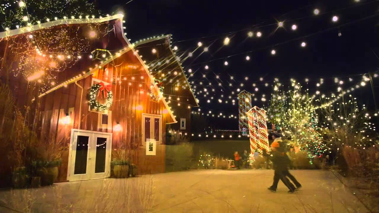 Trail Of Lights At Denver Botanic Gardens At Chatfield Youtube