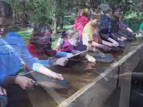 Gold Panning at the Reed Gold Mine State Historic Site