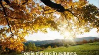 Various Artists - Together Forever (Bologna Summertime Mix)