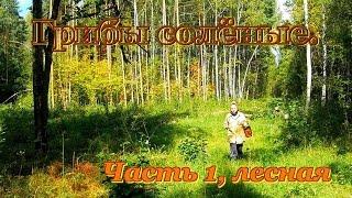 Солёные грибы. Как засолить грибы. Видео рецепты от бабки (Борисовны). Часть 1. Лесная.