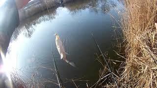 Моя рыбалка в декабре на новом месте
