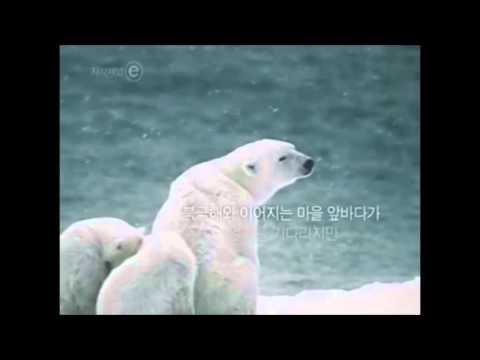 환경오염의 심각성-4분영상