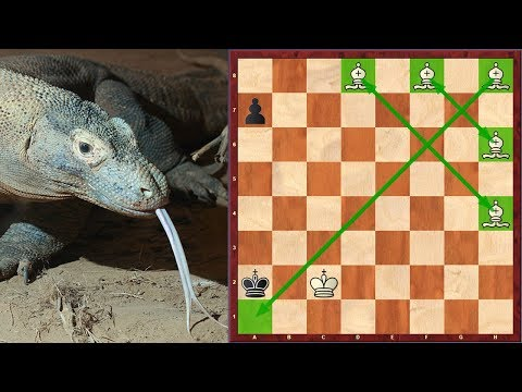 Can Komodo 10 Checkmate With 5 Bishops?