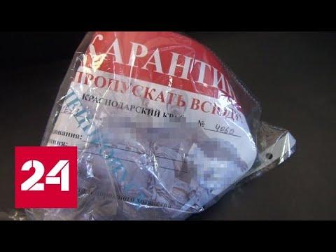 """В Краснодаре поймали торговца """"карантинными"""" пропусками - Россия 24"""