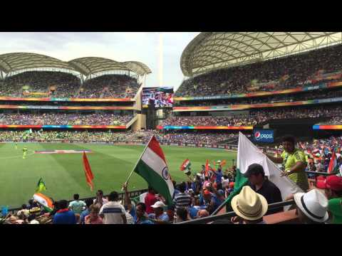Crowd at the India vs Pakistan ICC World Cup Match Adelaide Oval 15/2/2015
