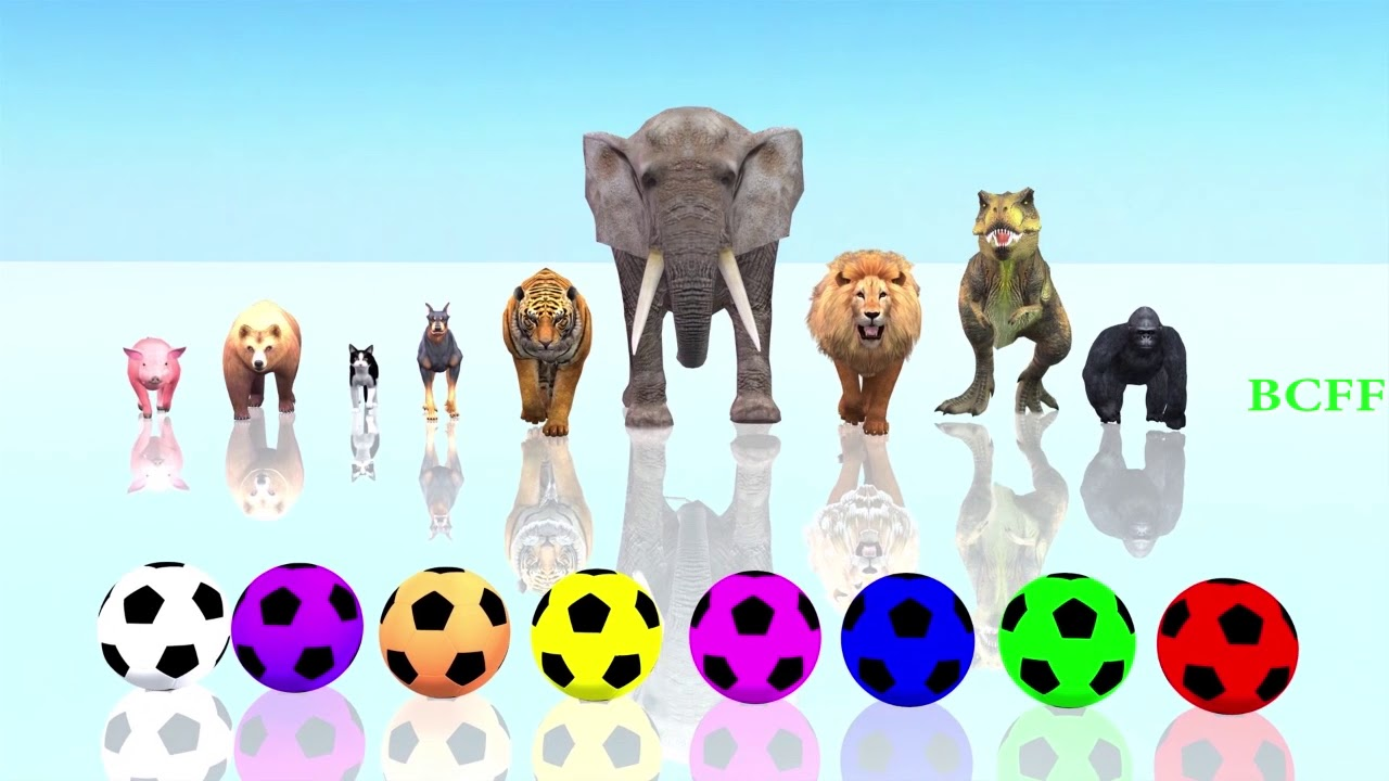Learn Animals Soccer Balls Cartoon Videos For Kids - Colors Soccer Balls Wild Animals