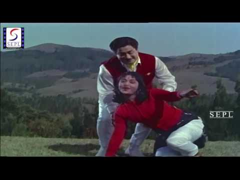 Chittu Kuruvi - Super Hit Tamil Movie Song