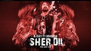 Sher Dil - AKay ft. Bohemia | New 2018 rap/song beat | akay ft. bohemia Type Beat Instrumental