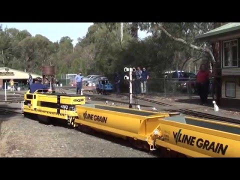 A day at the Diamond Valley Railway