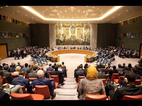 مجلس الأمن يبحث التطورات في قطاع غزة  - نشر قبل 3 ساعة