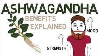 ASHWAGANDHA BENEFITS: What Ashwagandha Is And How It Works