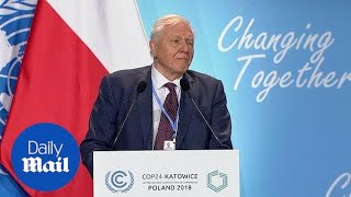 David Attenborough warns 'time is running out' to tackle climate change