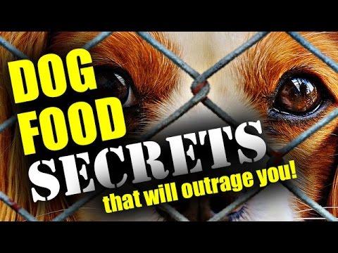Andrew lewis dog food secrets book dog food secrets recipes youtube andrew lewis dog food secrets book dog food secrets recipes forumfinder Choice Image