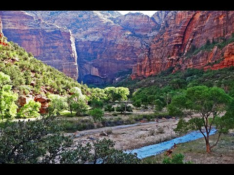 Visiting Zion National Park, Park in Utah, United States