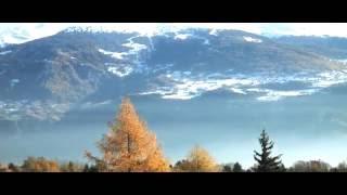 Живая природа / Осень / Листопад / Autumn HD