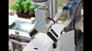 OnRobot collaborative grippers pack delicate herbs at Rosborg Greenhouse