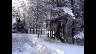 REEFER CONTAINER CABIN HOME IN THE OKANOGAN HIGHLANDS IN JANUARY -- 4 OF 4, WALK 2