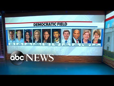 More Democratic candidates announce for 2020