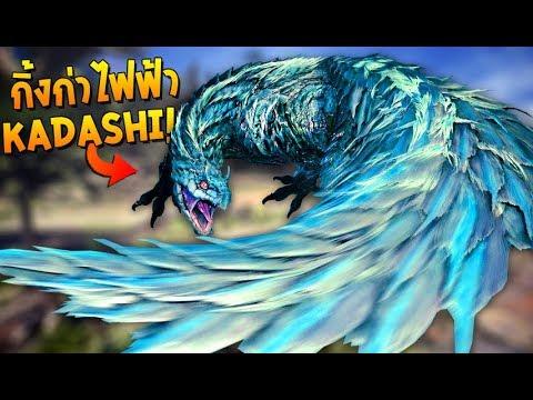 ออกล่ากิ้งก่าไฟฟ้า คาดาชิ! | MONSTER HUNTER: WORLD #7 Tobi-Kadashi thumbnail