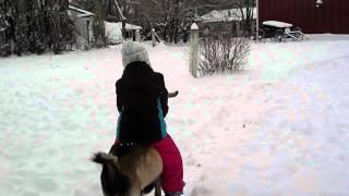 Sophia riding a goat! Yeeeee Haaaaaa