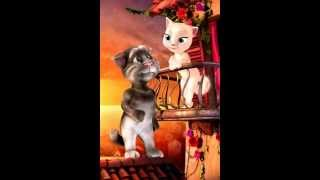 Funny punjabi/Urdu talking Tom video