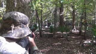 Horn Swamp Hog Hunting - Greatest Hits Volume One