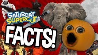100 Facts That Will BLOW YOUR MIND!!! (Saturday Supercut)