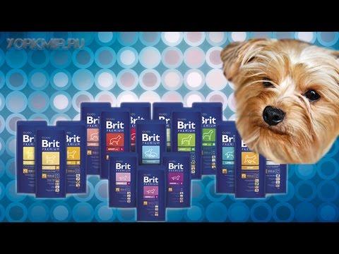 Корм для собак Brit   Виды   Отзывы   Характеристики.