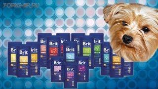 Корм для собак Brit | Виды | Отзывы | Характеристики.
