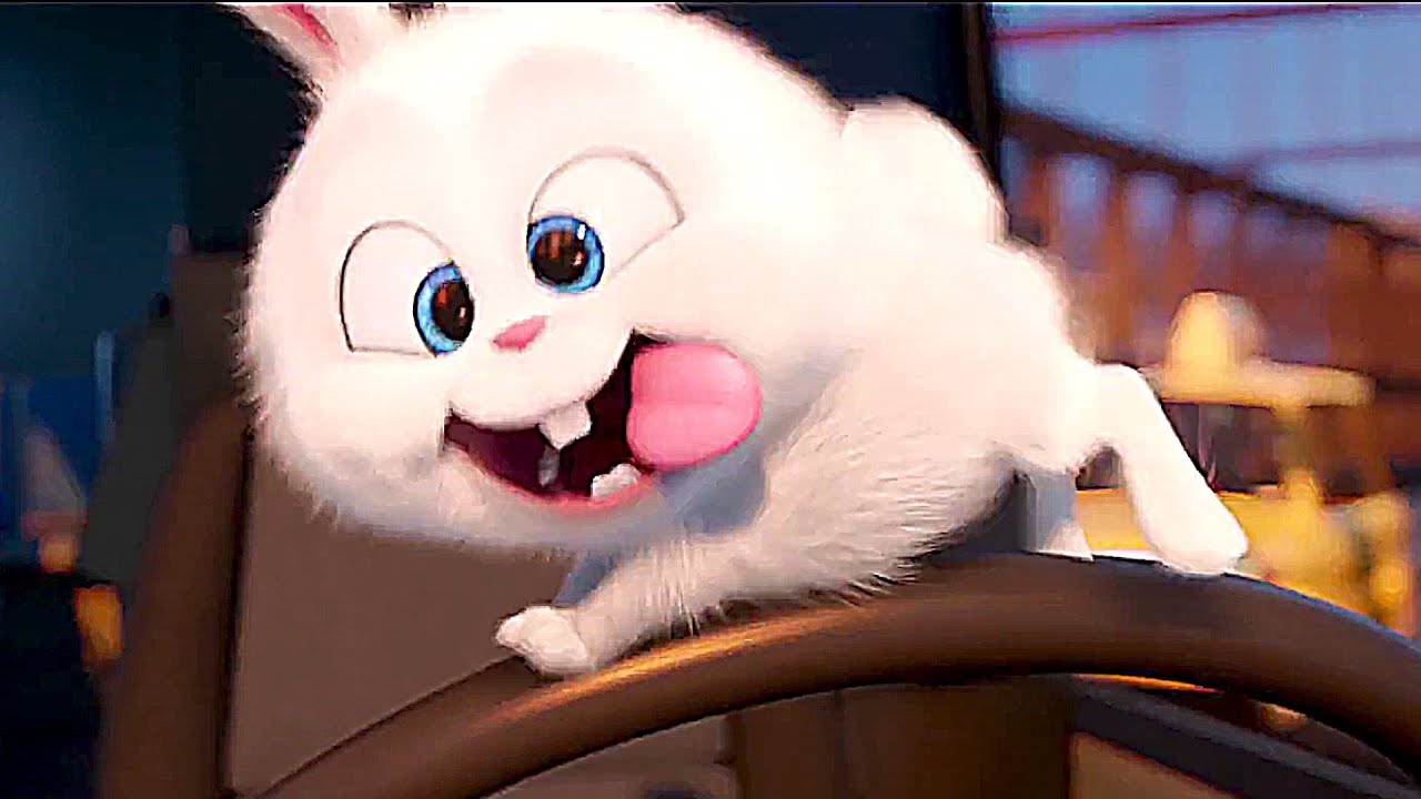 the secret life of pets meet psycho bunny   youtube