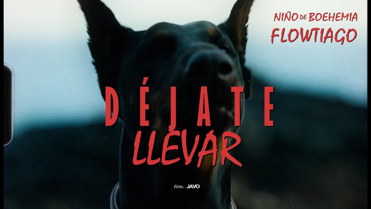 Download NIÑO DE BOHEMIA Ft. FLOWTIAGO - Déjate Llevar (Video Oficial)