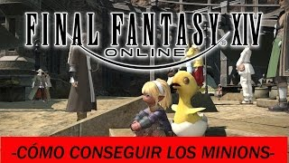 FINAL FANTASY XIV -Guia para conseguir los minions!-