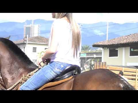 ride-for-peace-quindio-armenia-colombia---tourism-in-the-quindio-april-2012.split.5
