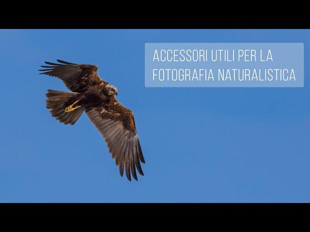 Accessori utili per la fotografia naturalistica