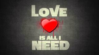 Love Is All I Need